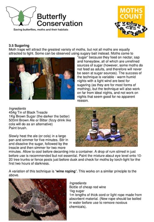 Find Moths With Moth Traps (PDF)