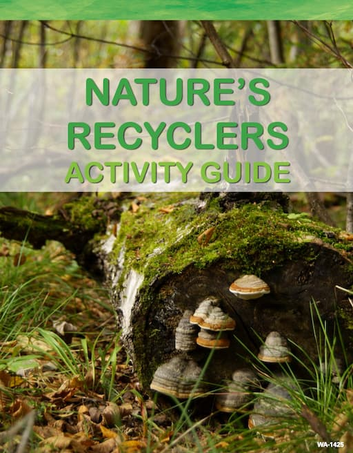 Nature's Recyclers - Activity Guide (PDF)