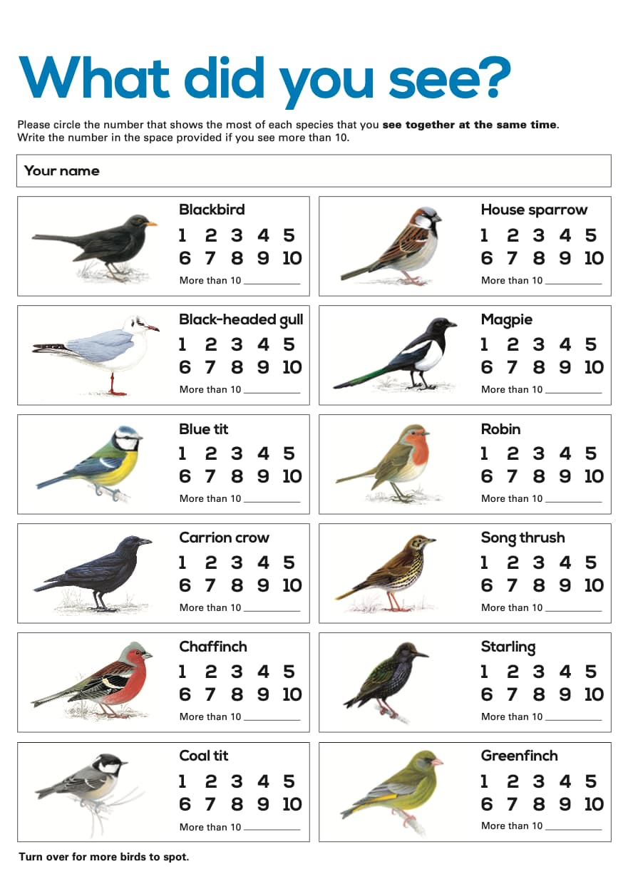 RSPB What did you see? Worksheet