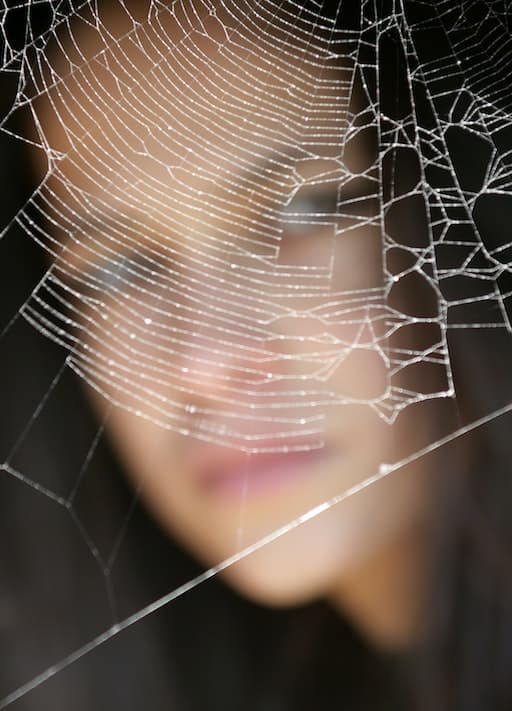 Spider Webs: Not Just For Hallowee
