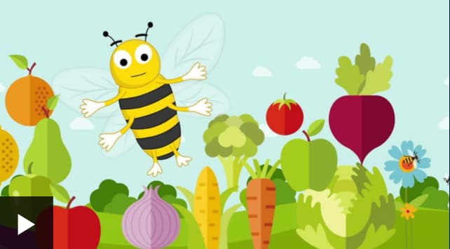 Why Are Bees So Important?