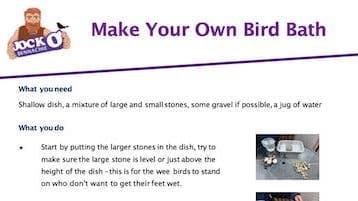 Make Your Own Bird Bath (Bailies)