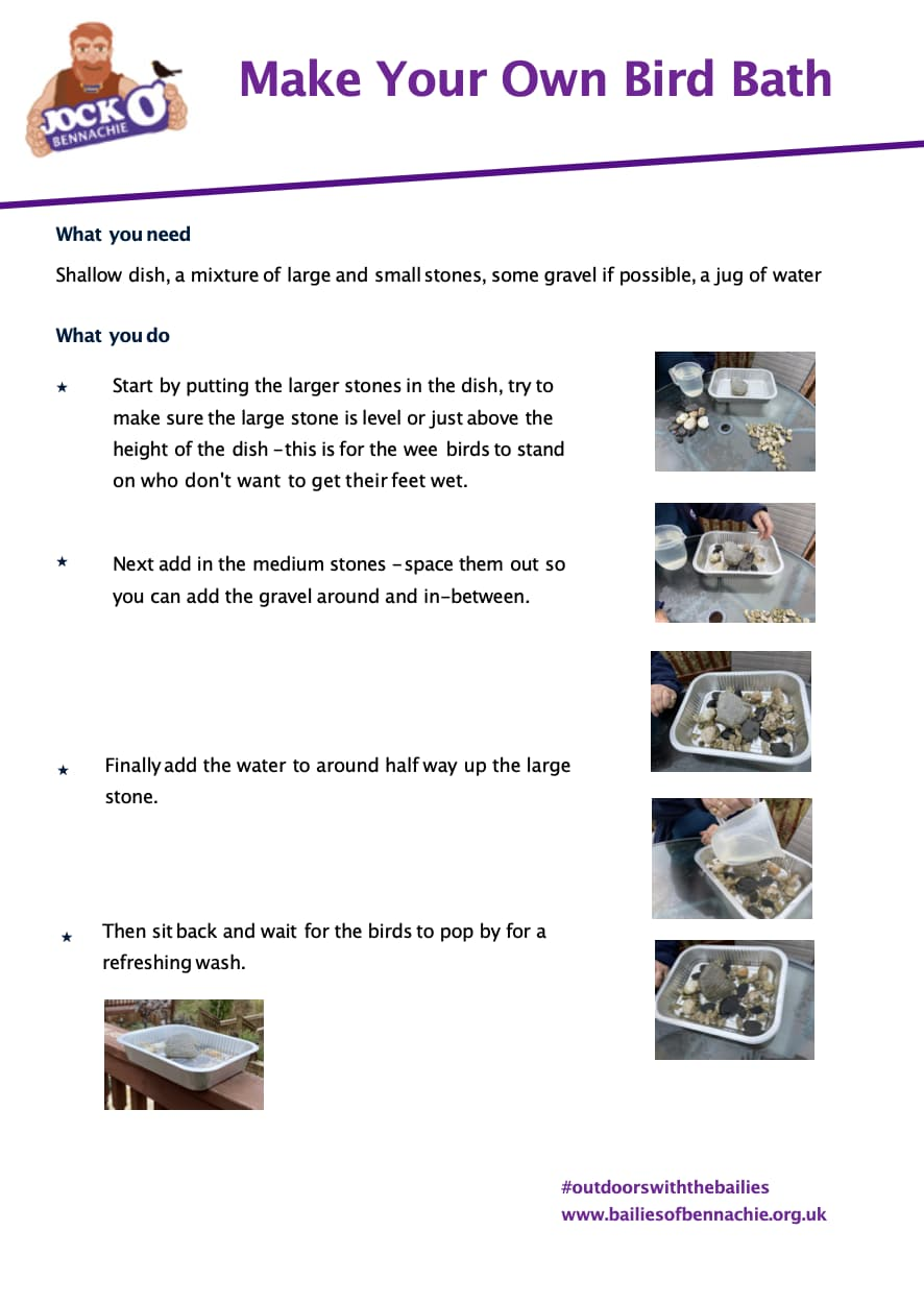 Bird Bath Activity Worksheet