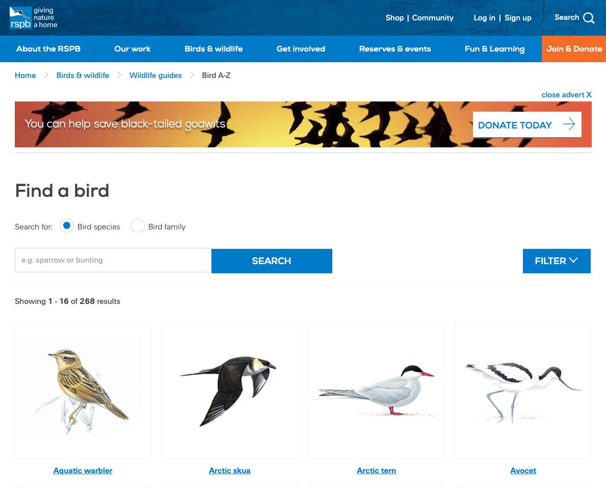 RSPB Bird Guide