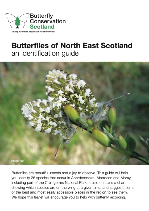 Butterflies of North East Scotland Cover