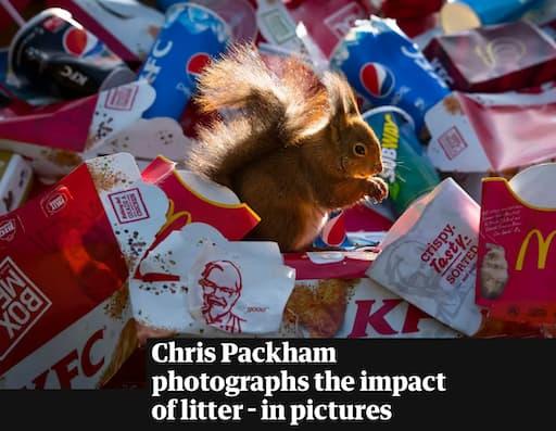 The Guardian Newspaper: When Wildlife Meets Litter