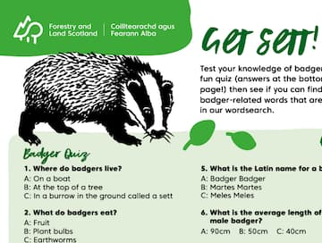 Get Sett - Test Your Knowledge of Badgers