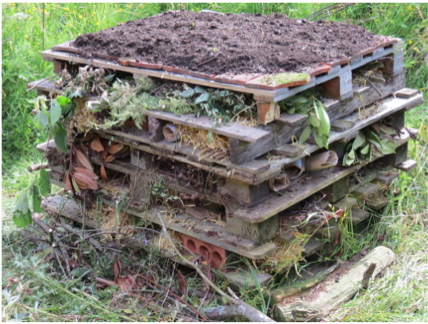 Build an insect hotel
