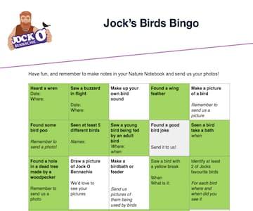 Jock's Biirds Bingo