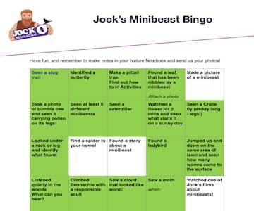 Jock's Minibeast Bingo