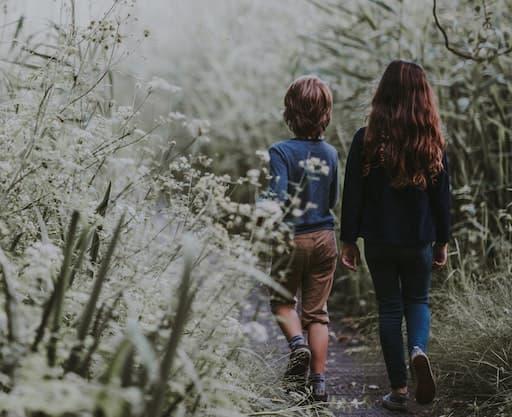 Children Walking In Forrest