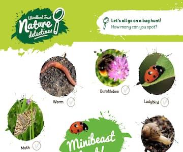 Minibeast Hunt (Woodland Trust)