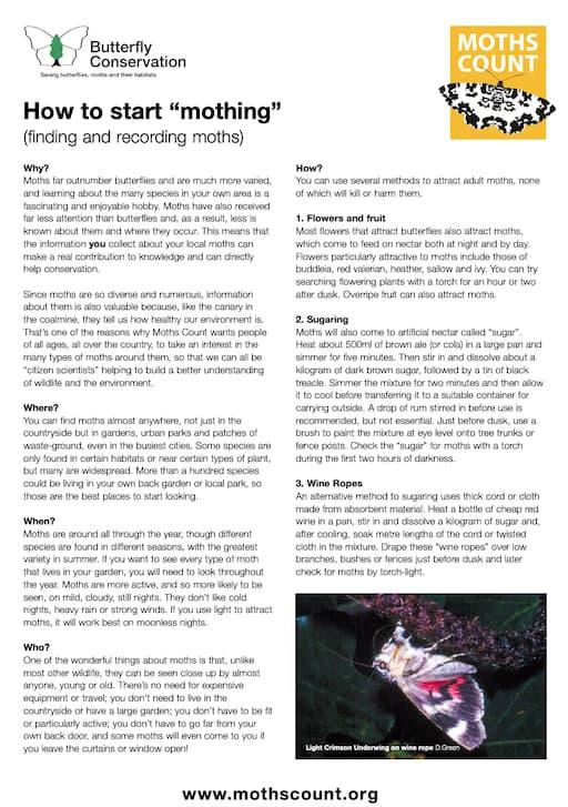 How To Start 'Mothing' (PDF)