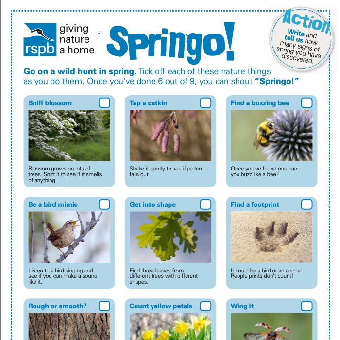 RSPB - Spring Wild Hunt (PDF)