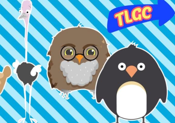 What Type Of Bird Are You? (CBBC)